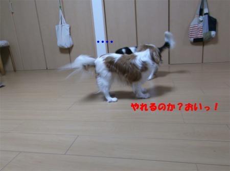 003_convert_20120217170111[1]