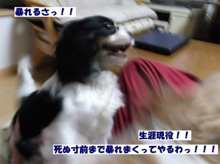07_convert_20120229151915[1]