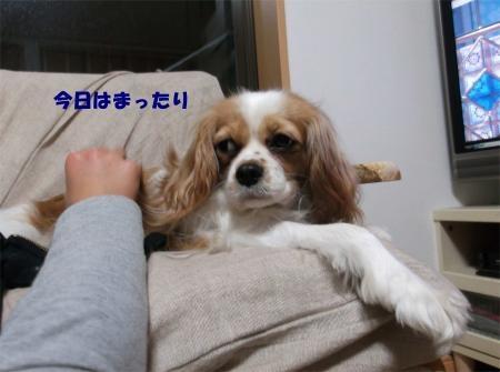 A01_convert_20120307171139[1]