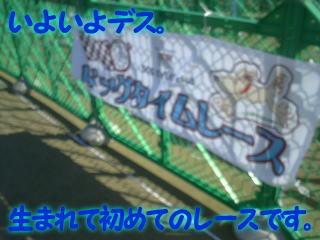 IYOIYO.jpg