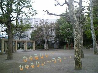 da3.jpg