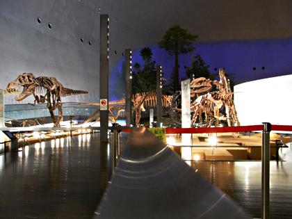 恐竜博物館 展示01
