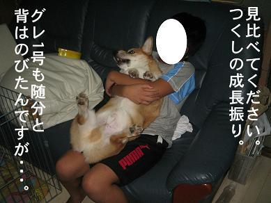 20060831181652.jpg