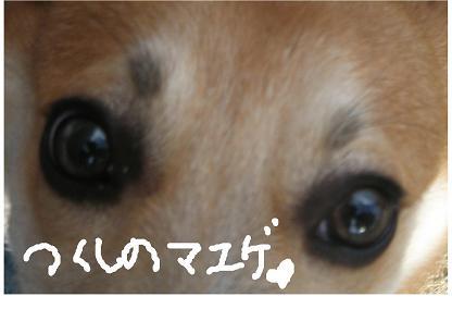 20060910160205.jpg