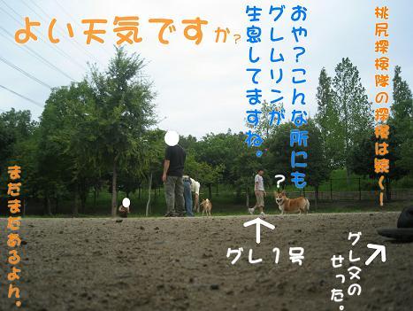 20060918164607.jpg