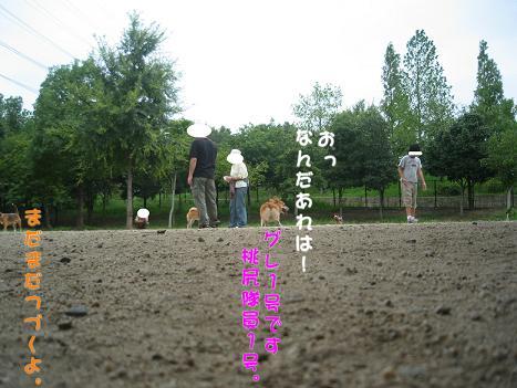 20060918164615.jpg