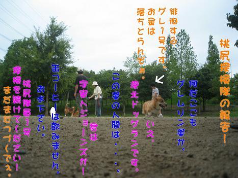 20060918164624.jpg