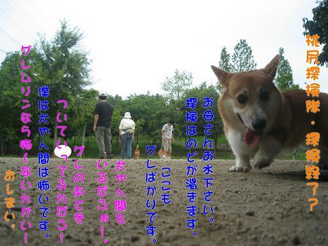 20060918164637.jpg