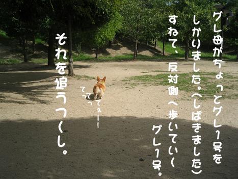 20060918201532.jpg