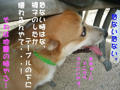 20060918201642.jpg