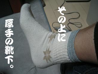20061120232934.jpg
