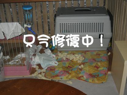 20061230195641.jpg