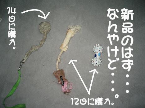 20070119185039.jpg