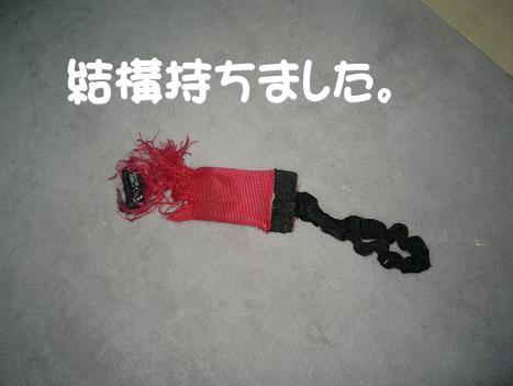 20070119185118.jpg