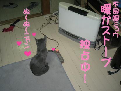 20070130204902.jpg