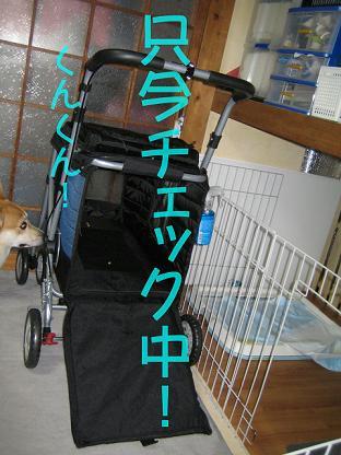 20070522121104.jpg