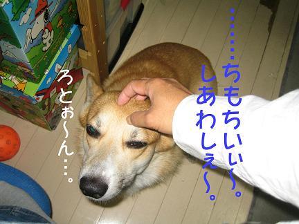 IMG_3481-2.jpg