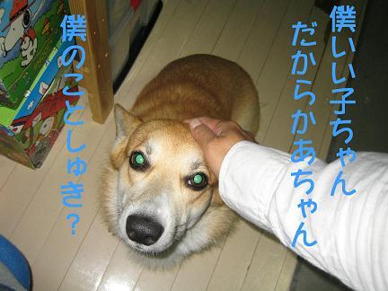 IMG_3484-2.jpg