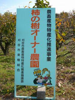 柿木オーナー