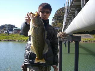010 48cm(はげ川)イモ