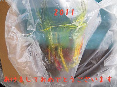 20110106-2.jpg