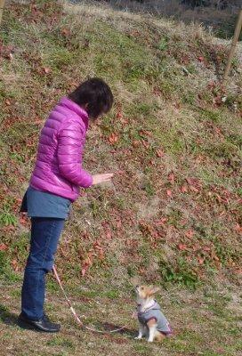 CIMG3498_20120121202405.jpg