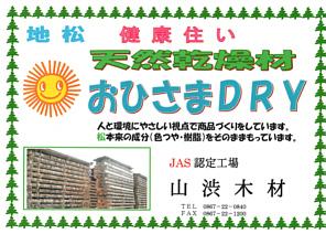 yamasibutirasi191127c.jpg