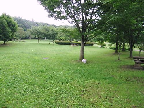 2011長岡公園451