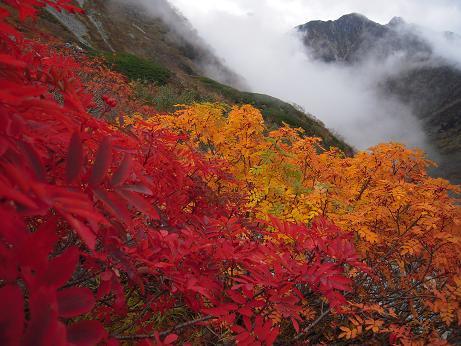 秋の色 005
