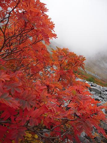 秋の色 007