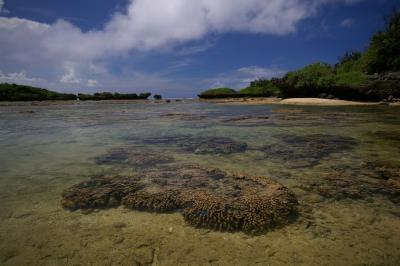 干潮の星砂海岸