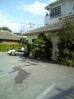 2007101815.jpg