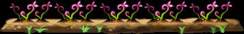 8100001 赤紫色薬草畑