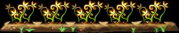 8100005 黄金の光薬草畑