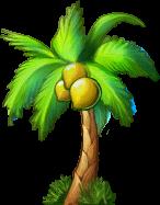 8412008 大きな椰子の木