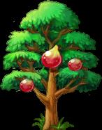 8412014 大きなイチジクの木