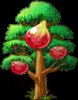 8412012 小さなイチジクの木