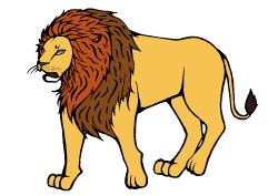 masai-lion1-(小)