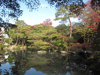 hakusasonsou_091110_2.jpg