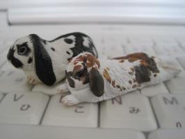 ウサギマグネット