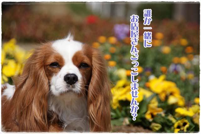 20120328_013.jpg