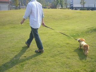 芝生で・・