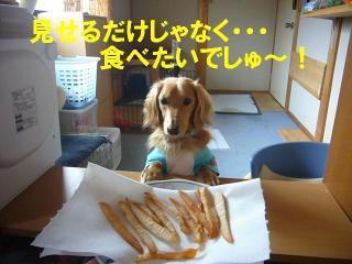 食べさせろ!