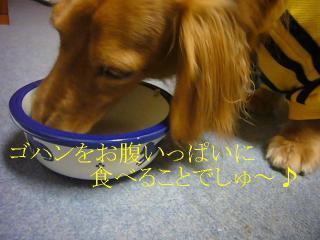 食べること・・