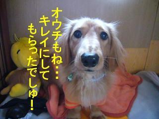 オウチもキレイ☆