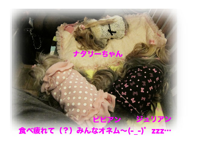 IMG_3310.jpg