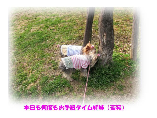 IMG_3719.jpg
