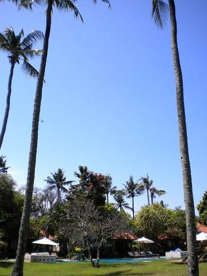 09年バリ島⑪