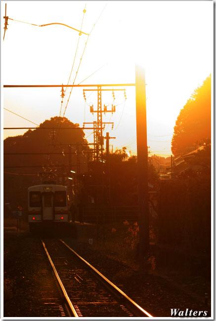 DSC01190A.jpg