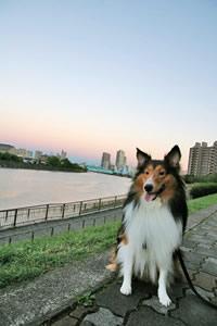川で写真♪